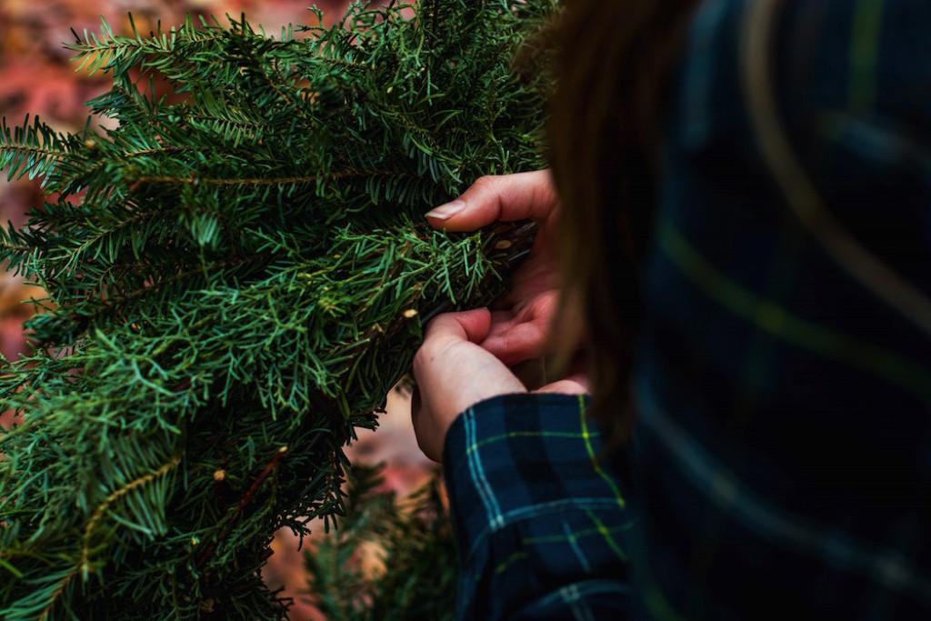 Choosing Christmas, Day Twelve